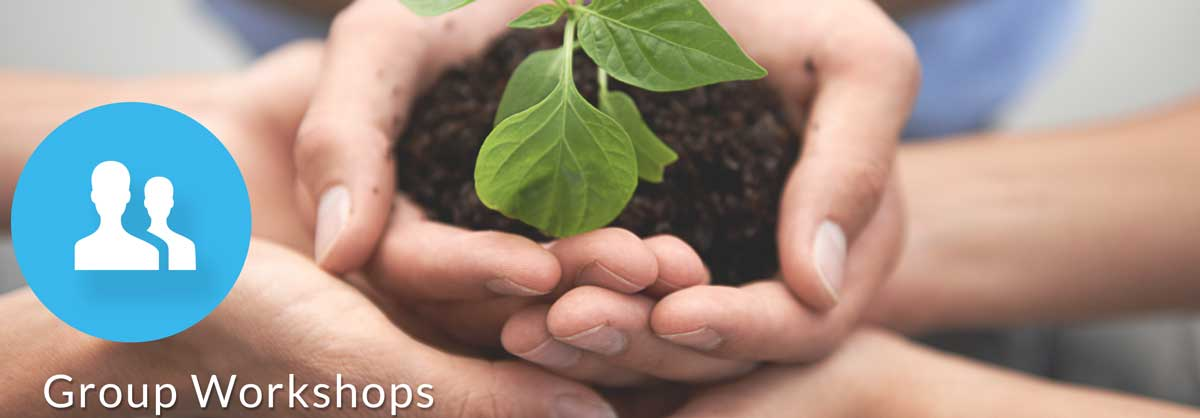 stewardship workshops