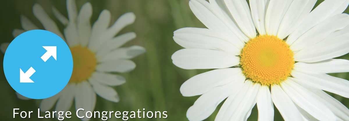 Stewardship for large congregations